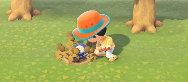 Recursos y Materiales de Animal Crossing New Horizons